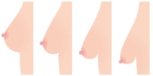 Hangende borsten